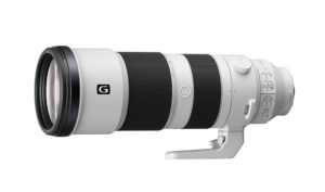 Read more about the article 【高機動鳥攝】Sony FE 200-600mm G OSS 萬六有找!